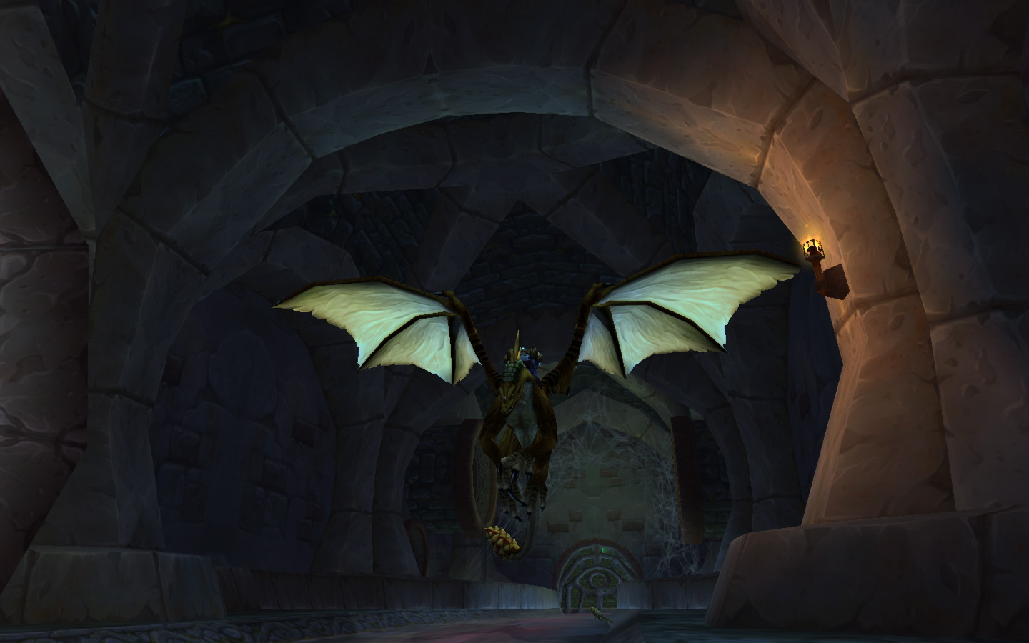 Dragons feel most at home underground donchaknow