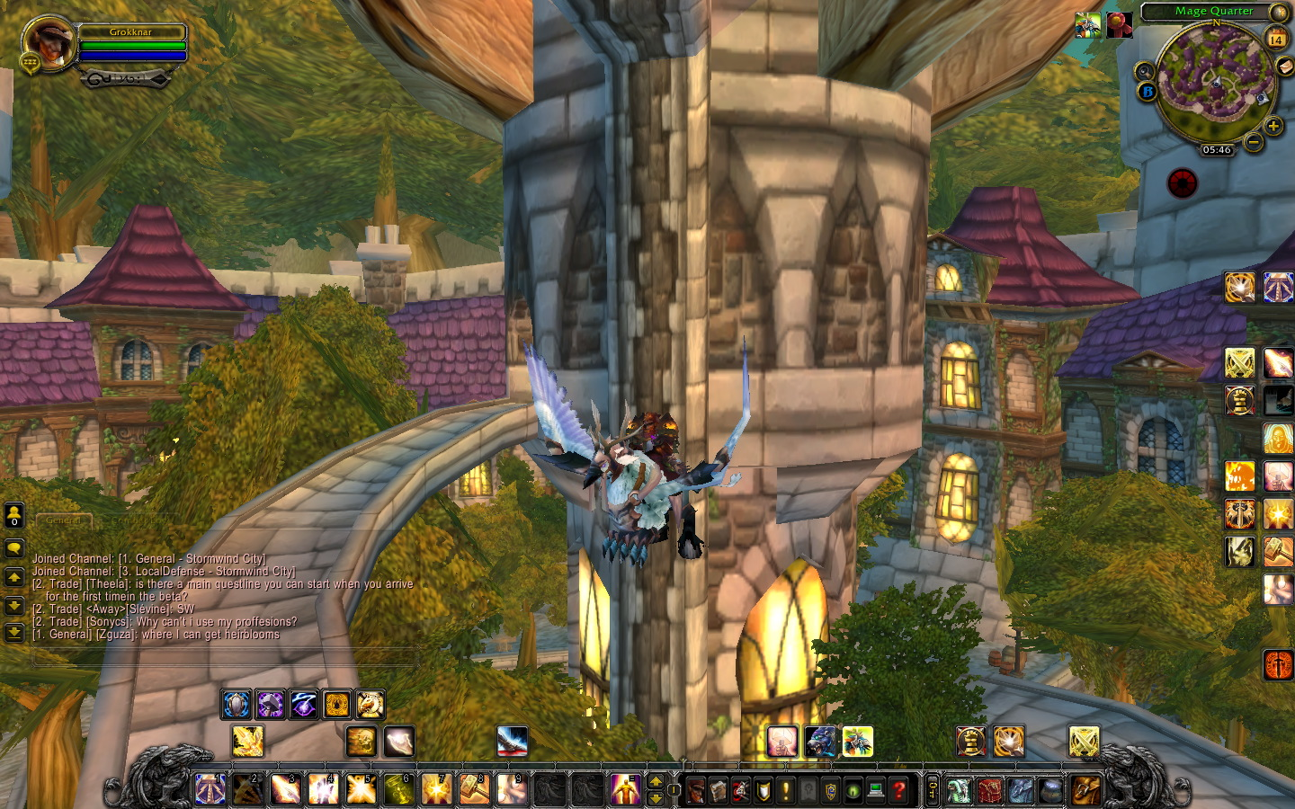First thing to do on arrival in Stormwind? Fly of course :)
